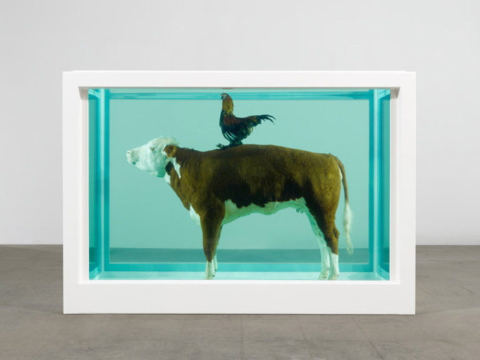 cock and bull by damien hirst