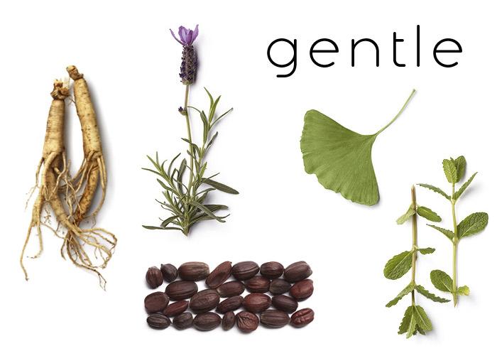 ingredients botanique pure nature