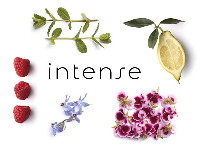 ingredients botanique intense