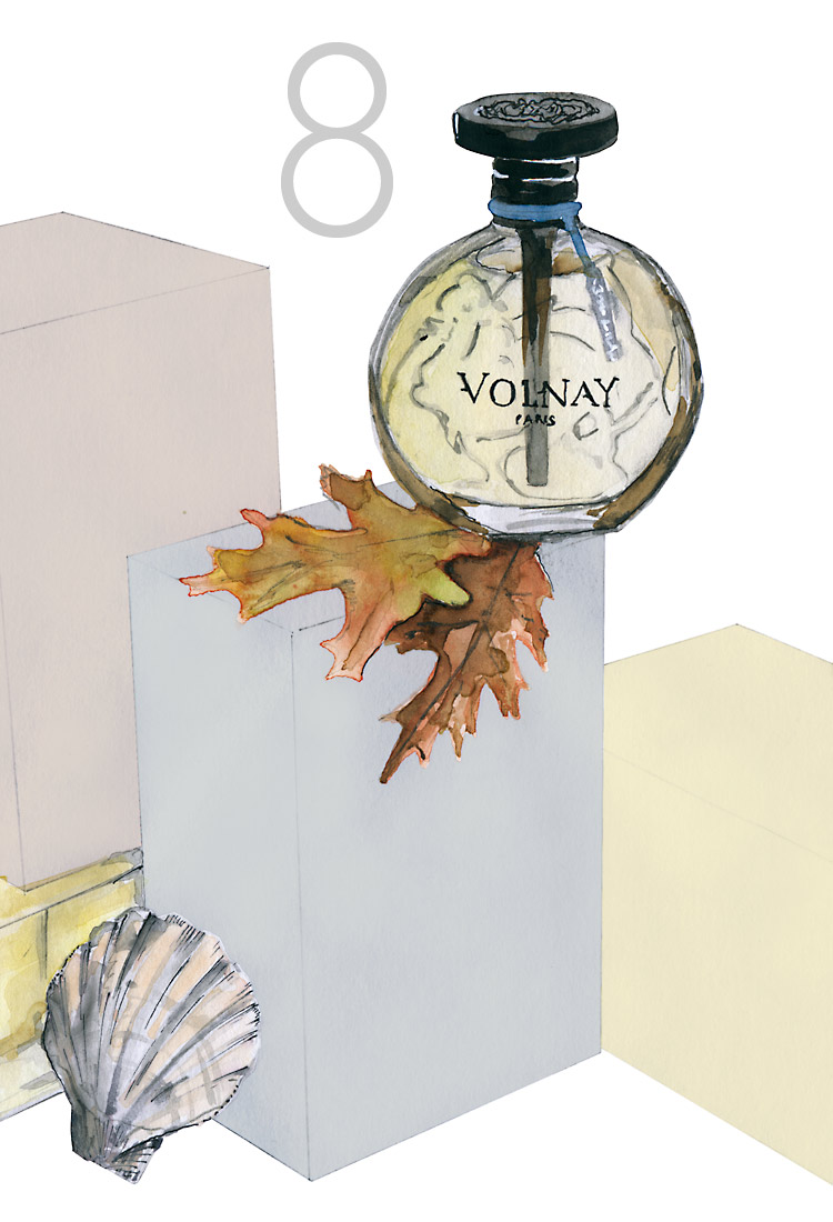 winter scent brume d'hover by volnay