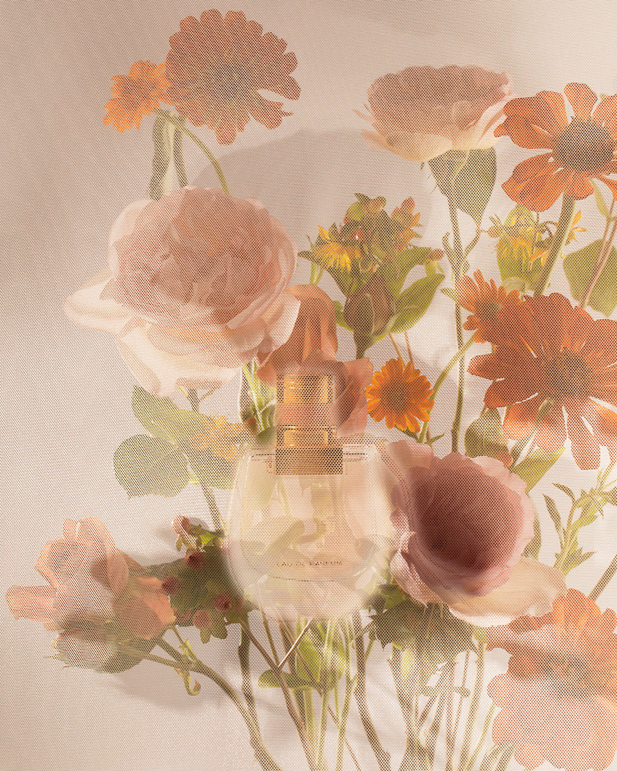 nomade by Chloe parfums