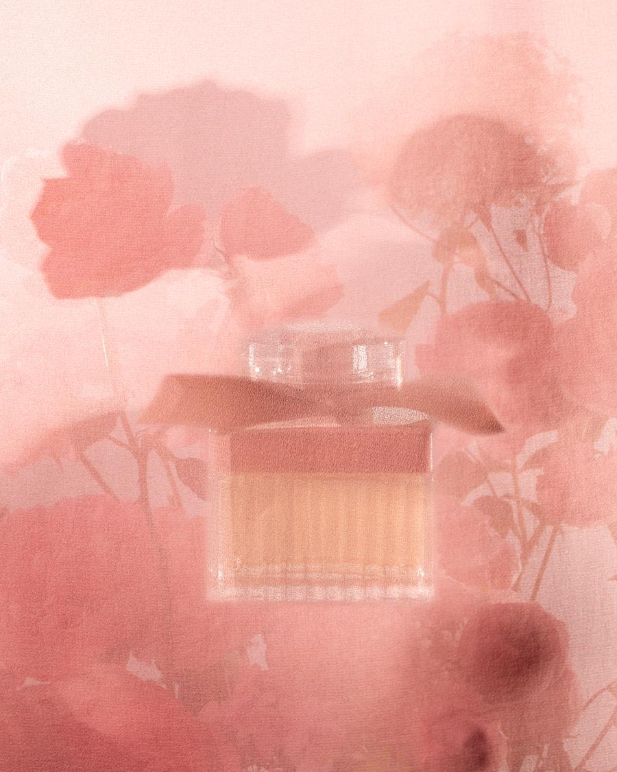 Chloe autumn perfume