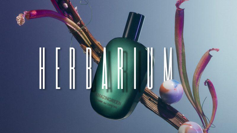 secret garden perfume editorial