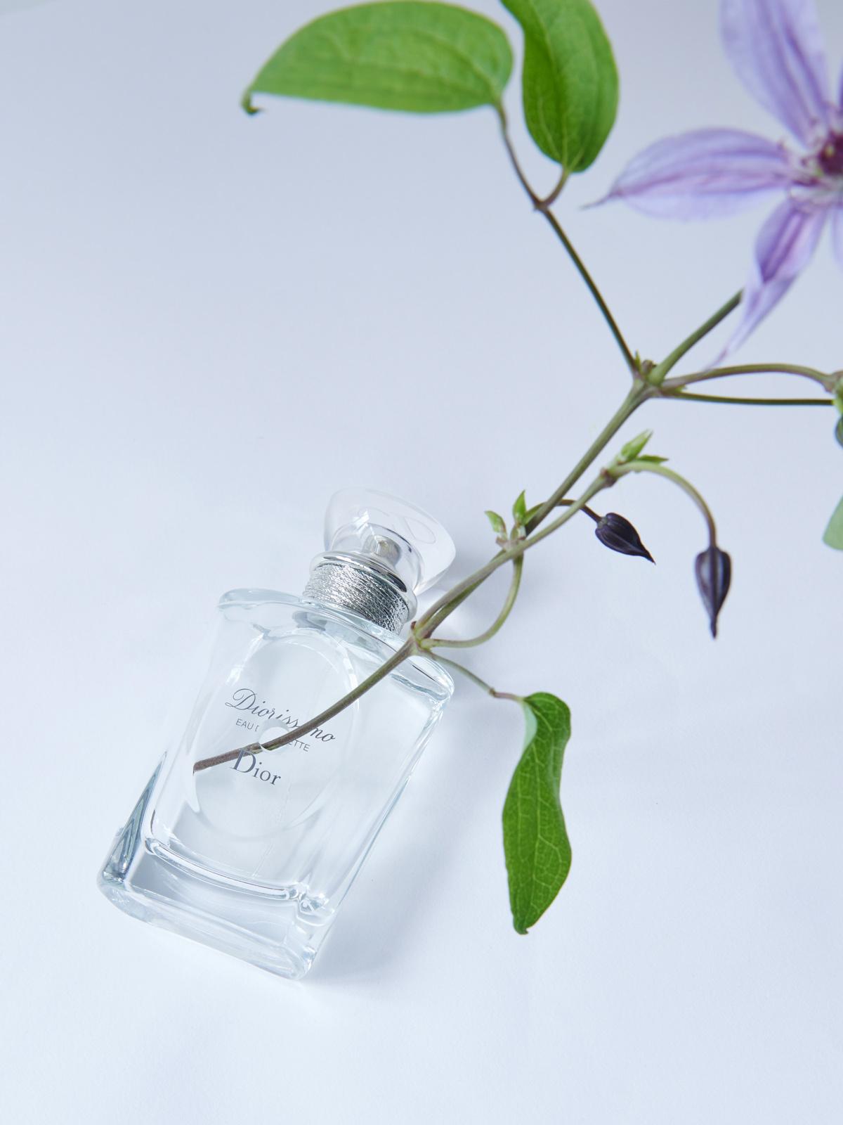 timeless perfume classics diorissimo by Dior
